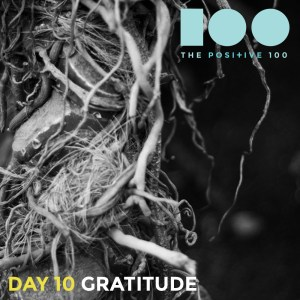 Day 10: Gratitude | friends are magic | Positive 100 from the Chronic Positivity Project