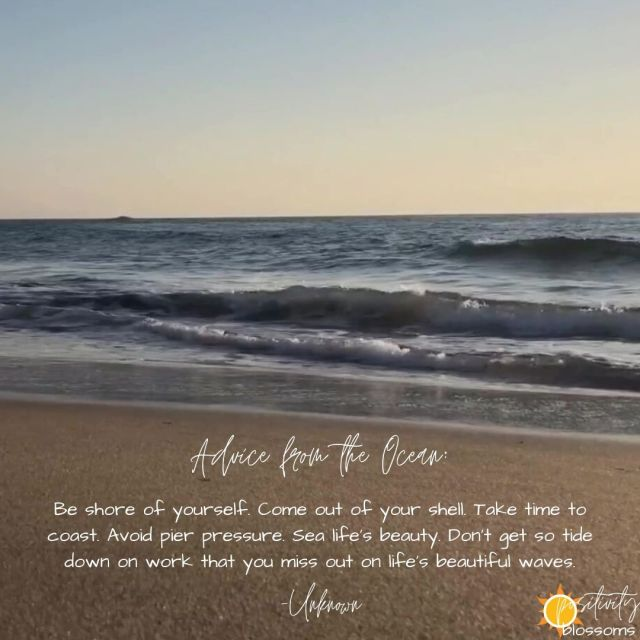 Happy Place #1 - Can't make it TO the beach? Looking to take a little break? Find a happy place? We've got you… virtually covered!