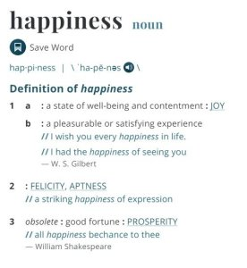 Defining happiness Definition via Merriam Webster Dictionary
