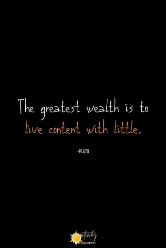 A Plato quote about wealth... and happiness: The greatest wealth is to live content with little. Pinnable image