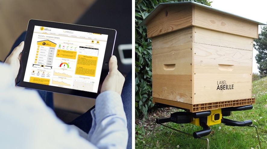 gestes-sauver-label-abeilles-ruche-connectee