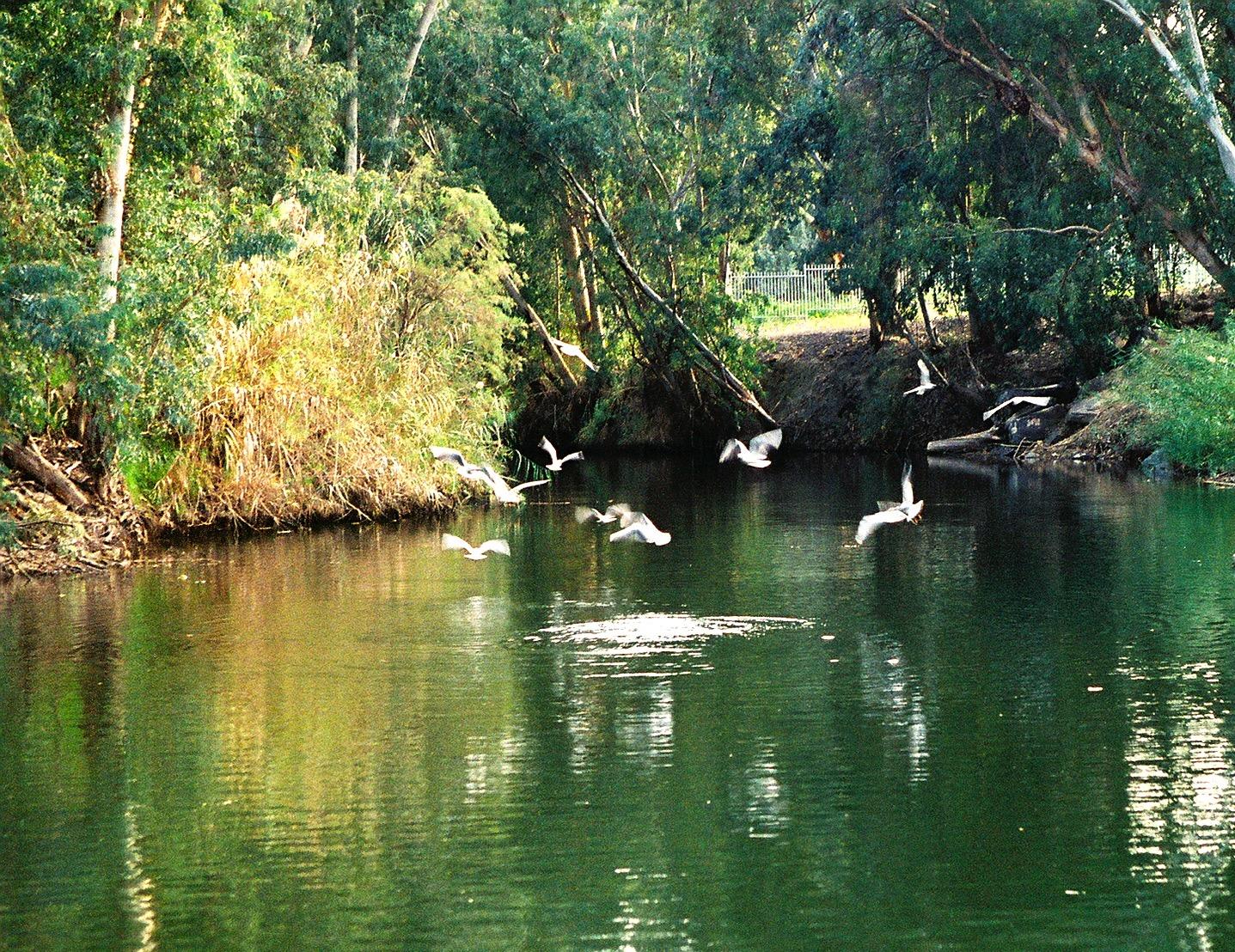 Jordan River - 1