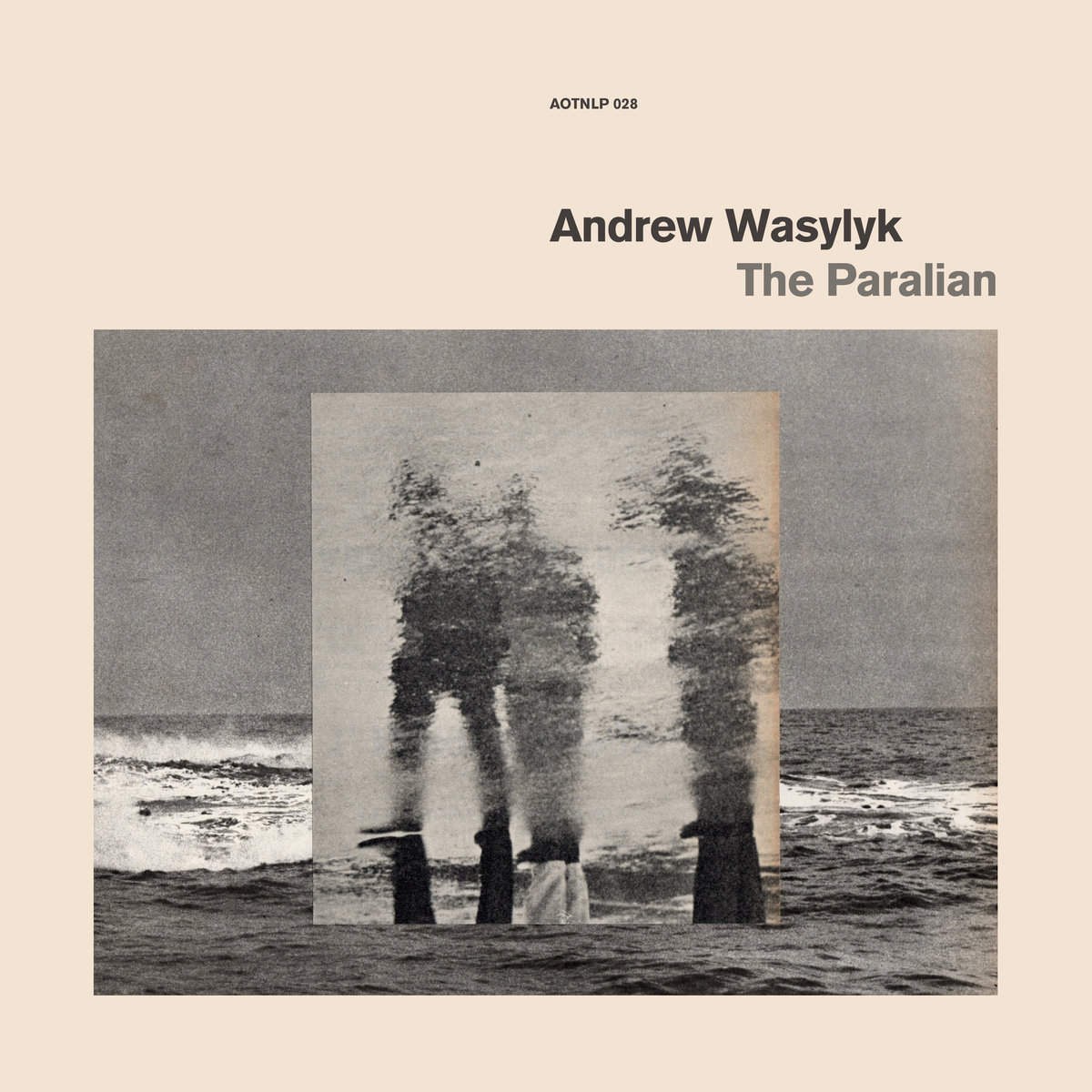 Andrew Wasylyk – The Paralian