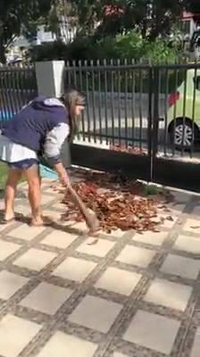 Ajudando A Pegar Folhas Secas