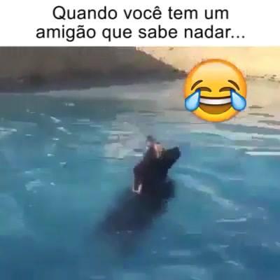 Um Amigo Pra Nadar