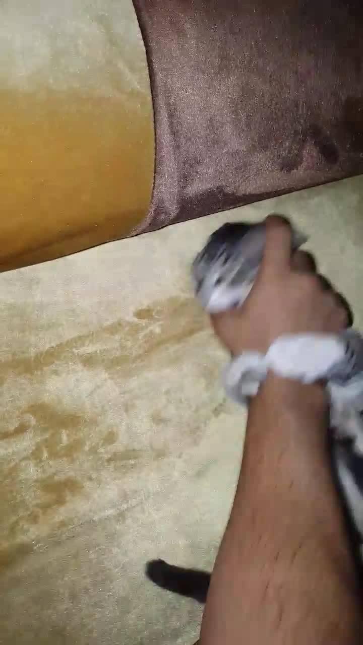 Gatinho Brincando Com A Mão De Alguém, A Brincadeira Favorita Deles!