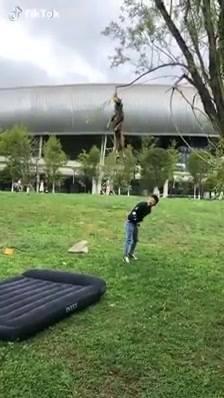 Saltos Incríveis, Veja!