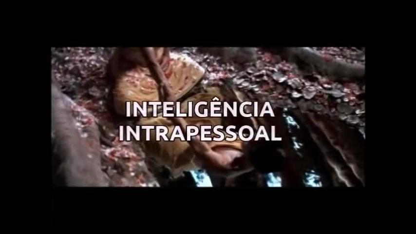 Veja Que Interessante A Teoria Das Inteligencias Múltiplas De Howard Gardner!