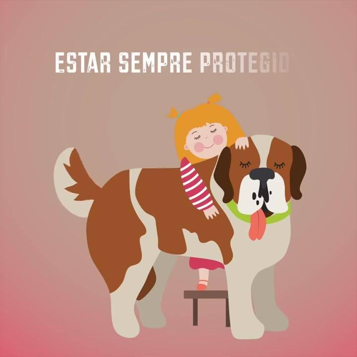 Esse Vídeo É Muito Legal! Veja Só Como É A Casa De Pessoas Que Tem Animais!!!