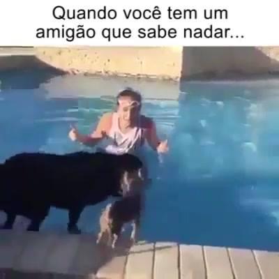 Quando Você Não Sabe Nadar, Mas Tem Um Amigo Que Sabe, Hahaha!