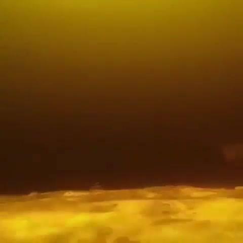 Vídeo Mostrando Cardume De Tucunaré-Açu, Os Peixes São Incríveis!!!