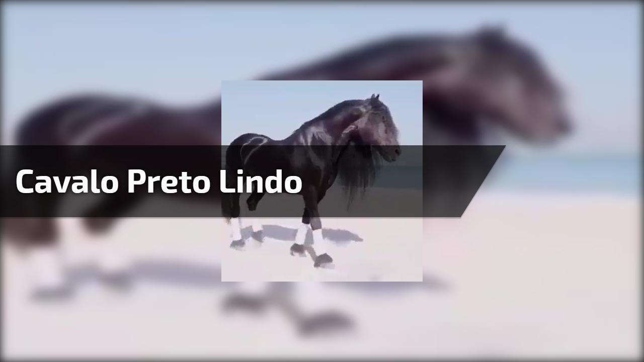 Cavalo Mais Bonito Do Mundo Compartilhe Com Quem Ama Cavalos