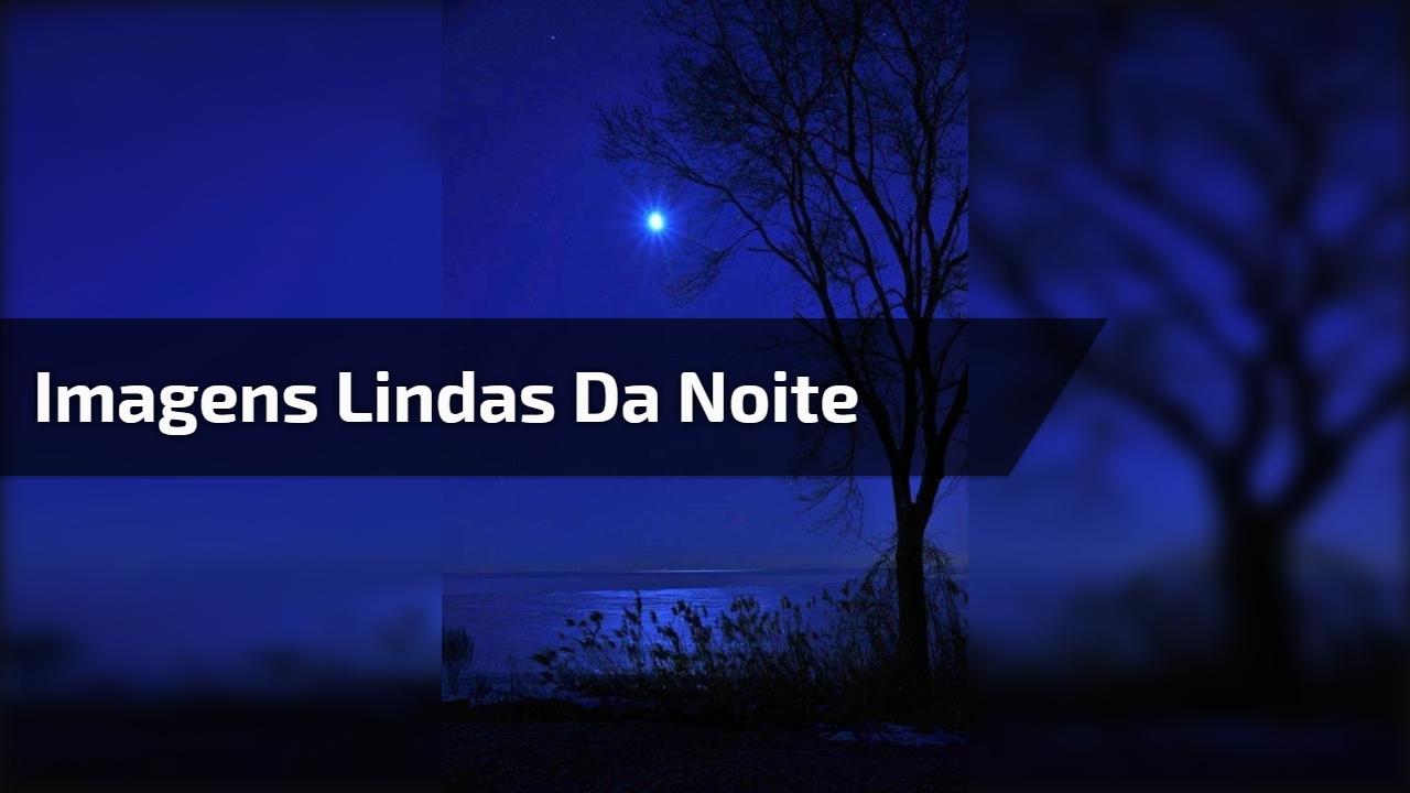 Uma Linda Noite Para Você: Uma Linda Noite Para Você Com Belas Flores