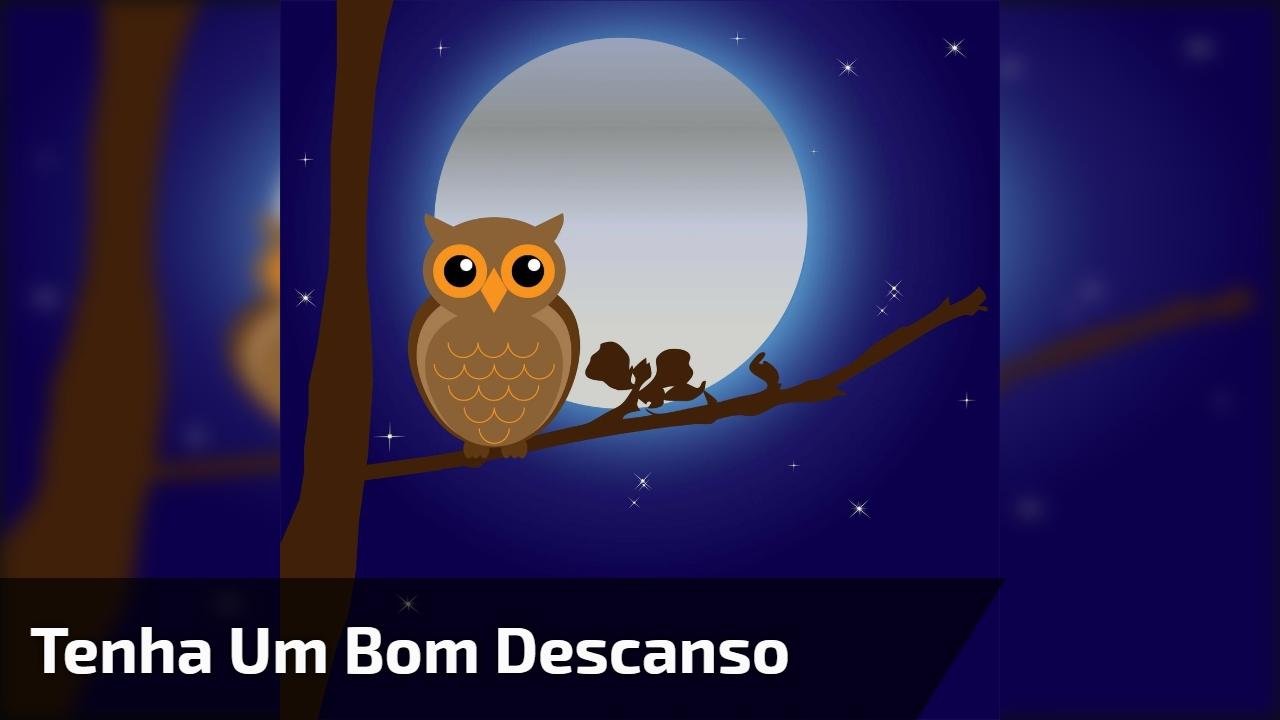 Boa Noite Bom Descanso: Bons Sonhos E Uma Excelente Noite Para Você