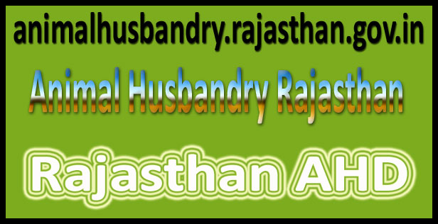 Rajasthan animal husbandry Recruitment 2016