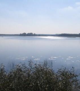 Озеро Должа — (поставский район)