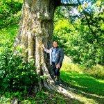 Дерево-великан в д. Рынкяны на лынтупщине.