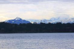Geneva (36)