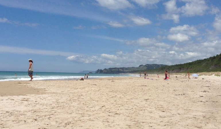 Opoutere beach - white sand and unspoilt nature.