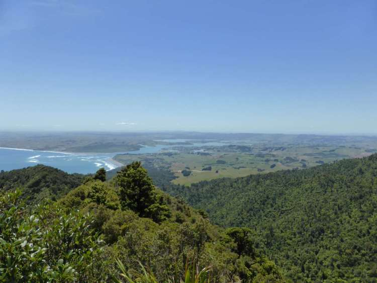 view to raglan from mt karioi lookout
