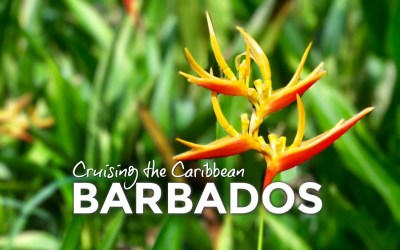 Cruising the Caribbean: Barbados