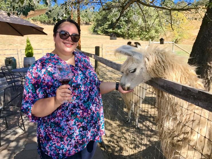 Rain Dance Vineyards, feeding a llama, Newberg, Oregon