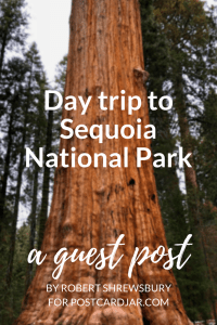 Daytrip to Sequoia National Park.