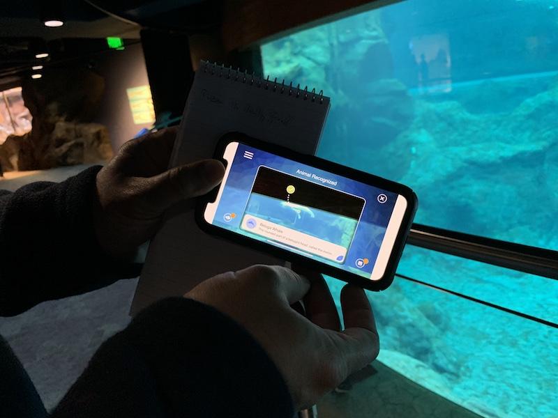 georgia aquarium app