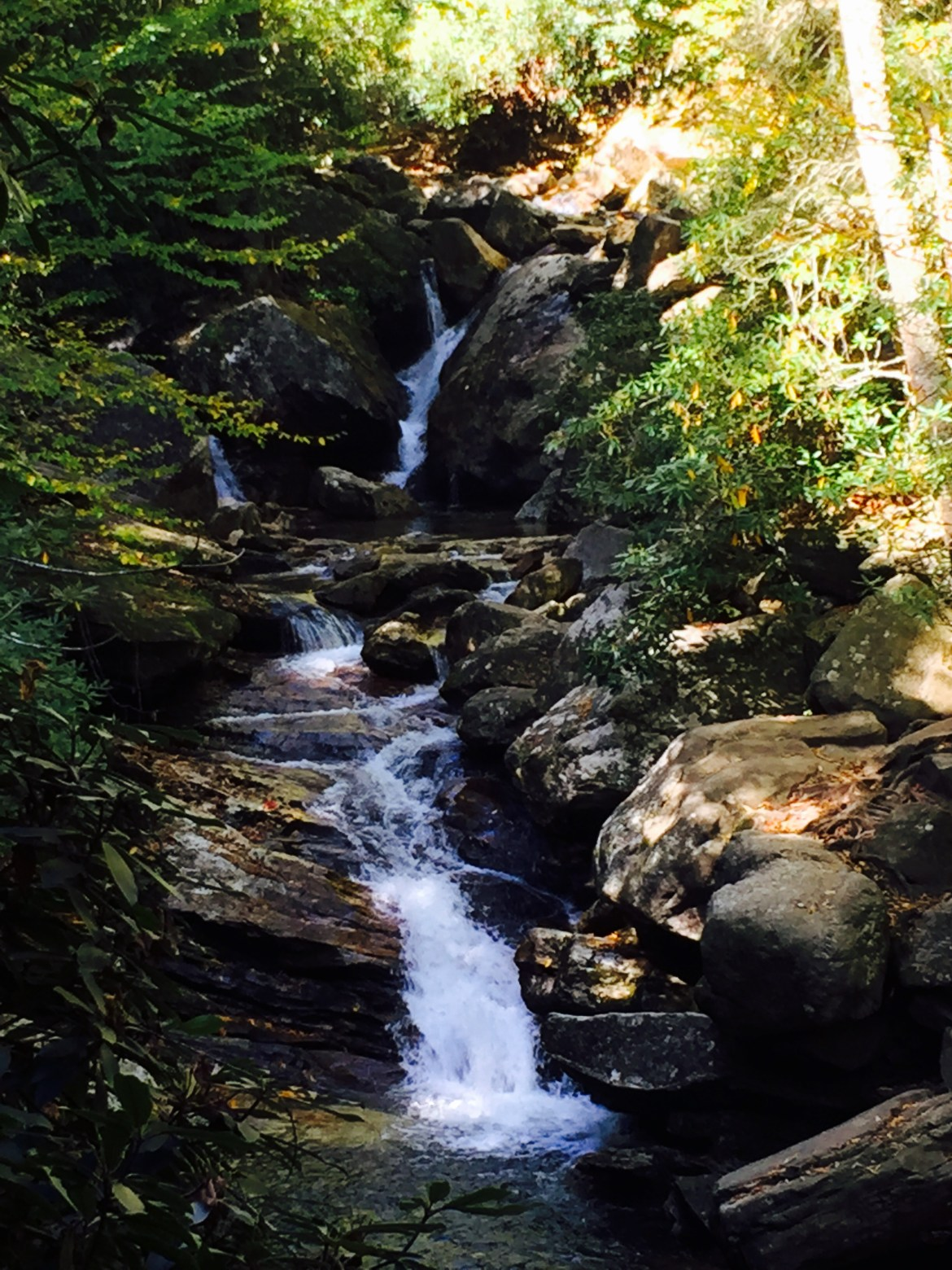 7 Reasons to Choose Asheville for Your Next Girls Trip
