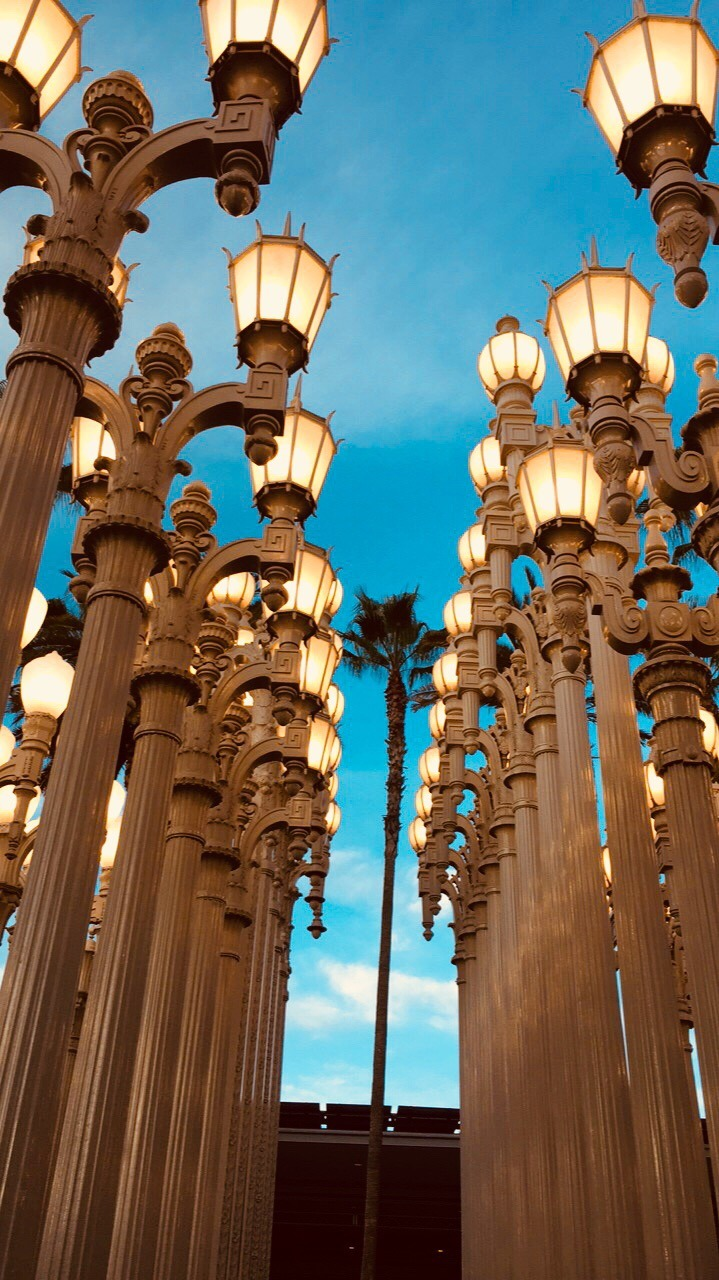Photography LA Museum of Art Lampposts