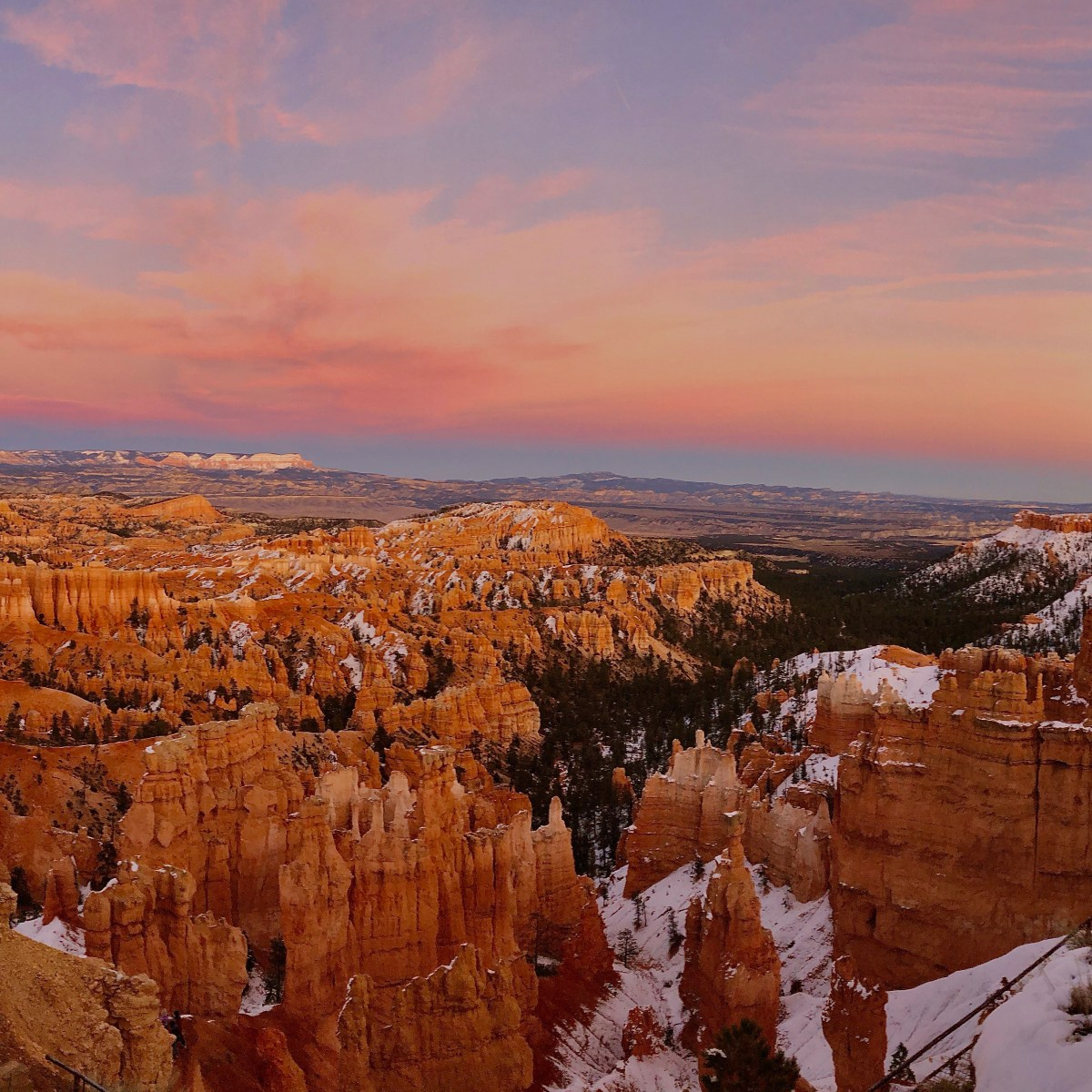 See Bryce Canyon & Zion in 48 hours