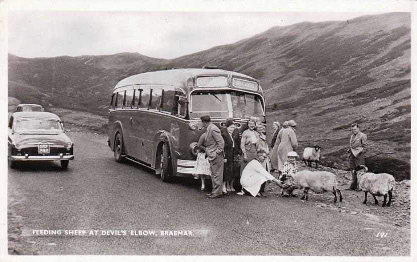 Vauxhall Wyvern