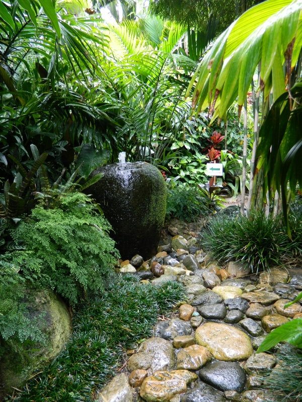 More tropical inspiration … - A Bellingen Diary on Tropical Backyard  id=56987