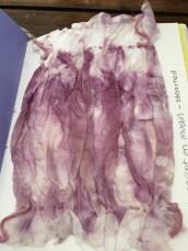EE Purple Carrot
