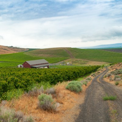A Guide to Visiting Yakima