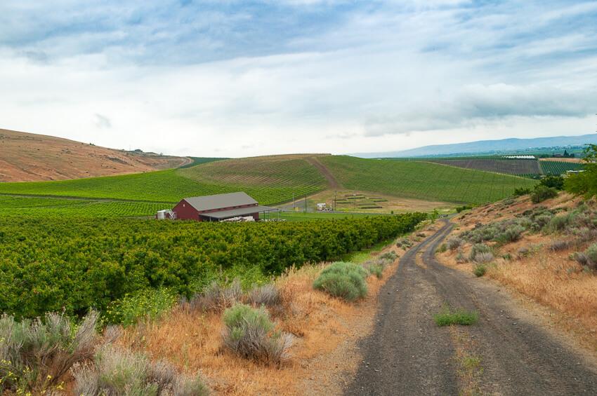 visiting yakima farm