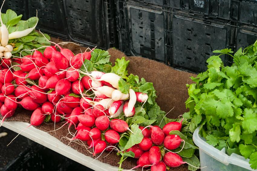 visiting yakima farmers market