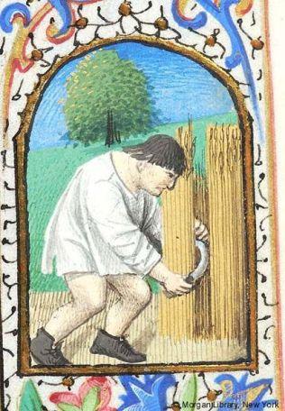 Peasant working in his shirt, c 1475