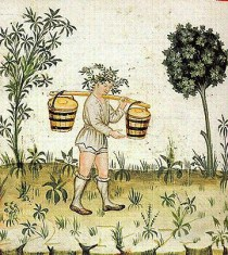 Peasant in shirt, braies and stockings. 1300's
