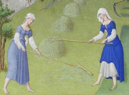 Peasant women raking hay work barefoot and wear their short sleeved kirtles looped up over long-sleeved linen smocks, c. 1415