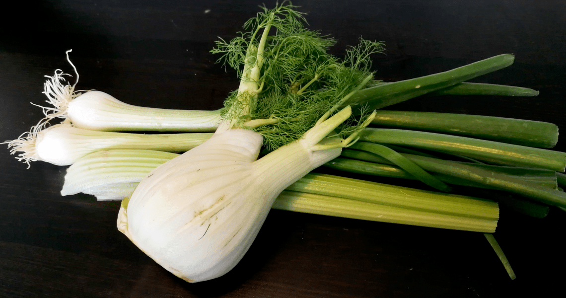 Spring onion and fennel