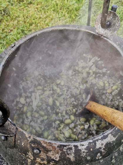 Medieval stew with beans, barley and pork