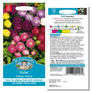 Mr. Fothergill's Seeds - Aster Milady Mixed