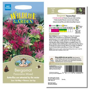 Mr. Fothergill's Seeds - Bergamot Panorama Mixed