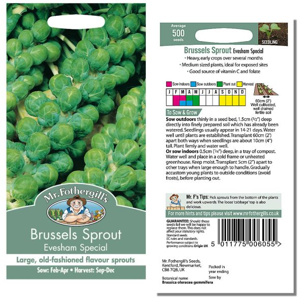 Mr. Fothergill's Seeds - Brussels Sprout Evesham Special