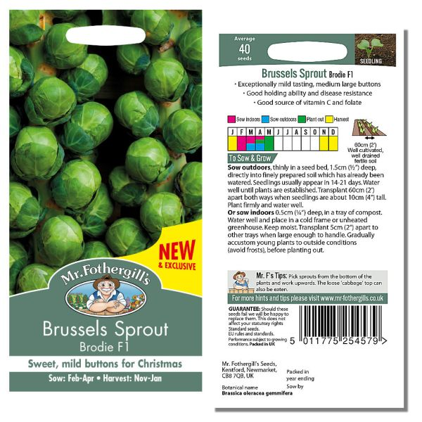 Mr. Fothergill's Seeds - Brussels Sprout Brodie F1