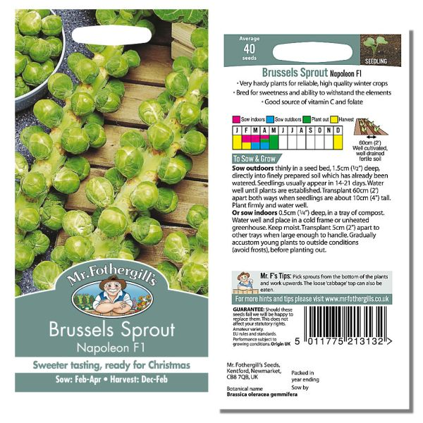 Mr. Fothergill's Seeds - Brussels Sprout Napoleon F1