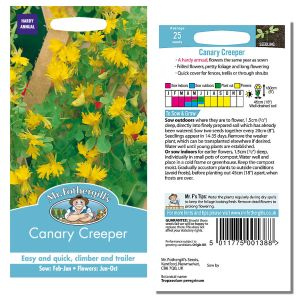 Mr. Fothergill's Seeds - Canary Creeper