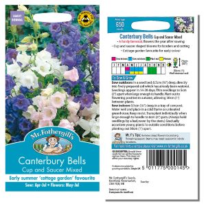 Mr. Fothergill's Seeds - Canterbury Bells - Cup & Saucer Mixed