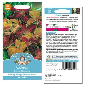 Mr. Fothergill's Seeds - Coleus Flame Dancers